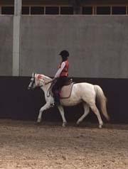 cheval Madeleine